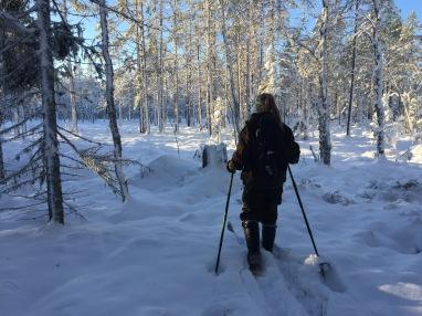 Snön kom tidigt och vi gav oss ut på toppfågeljakt.