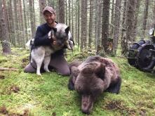 Martin Brenne lyckades efter en veckas hårt slit, tillsammans med gråhunden Grom, fälla denna björn.